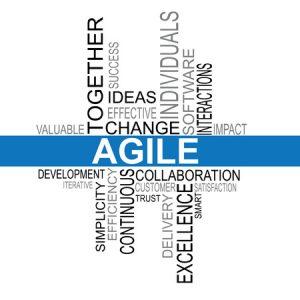 Agile Werte - Lizenz von CipDealer