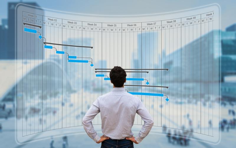 man looking at Gantt chart timeline